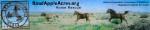 Road Apple Acres Horse Rescue