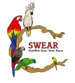 SouthWest Exotic Avian Rescue