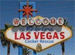 Las Vegas Cocker Spaniel  Rescue
