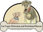 Las Vegas Doberman and Dachshund Rescue Inc
