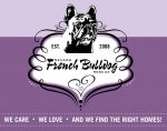 Nevada French Bulldog Rescue