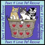 Paws 4 Love Pet Rescue