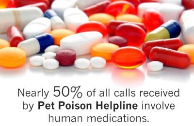 human-medications