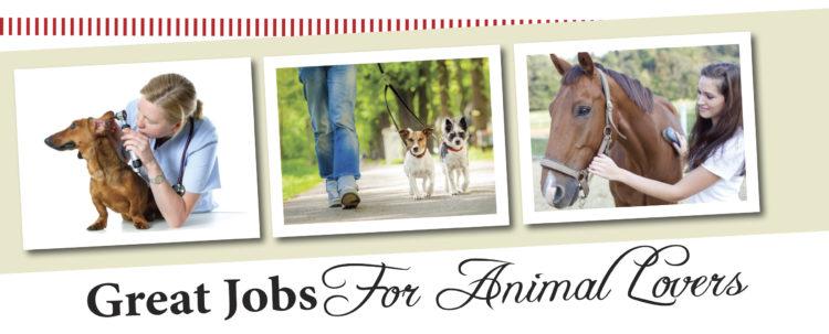careers that involve animals