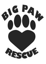 Big Paw Rescue