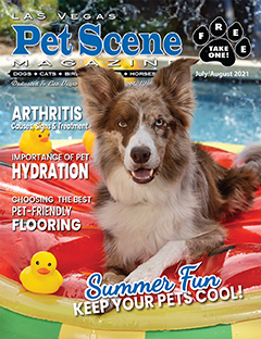 View July/August Edition